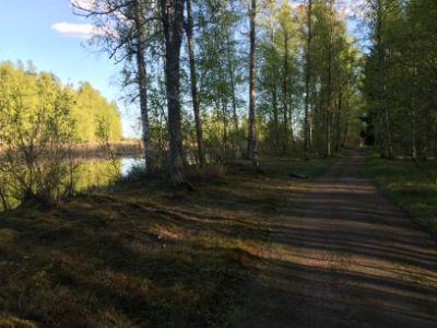 Finfina spår Örsholmen