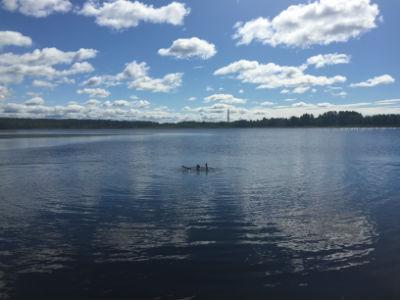 Simträning i Kroppkärrssjön 3