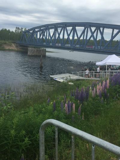 Hoppat i vattnet - Vansbro